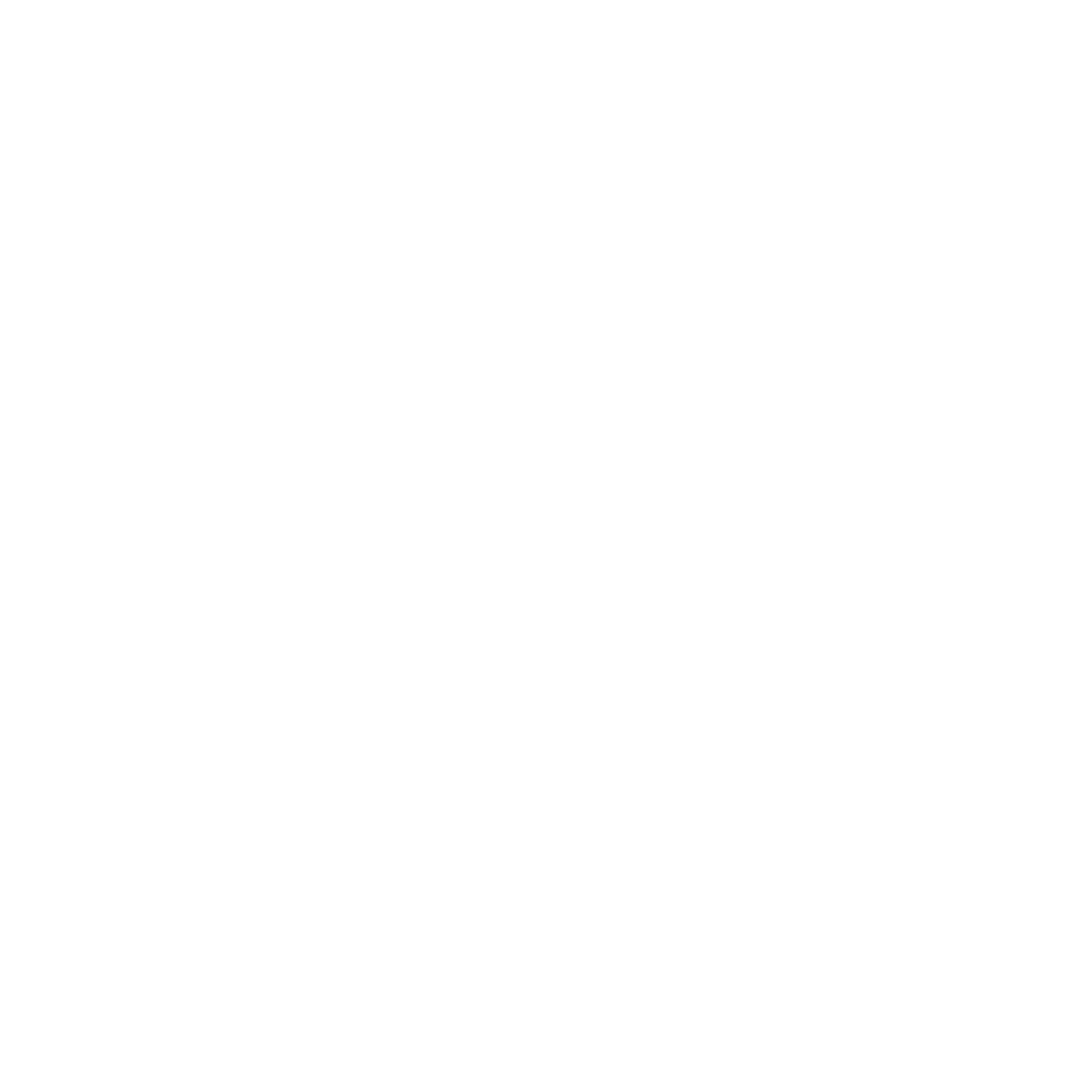 kirje-valkoinen-icon